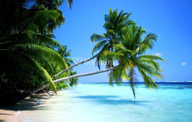 Destinos en el Caribe
