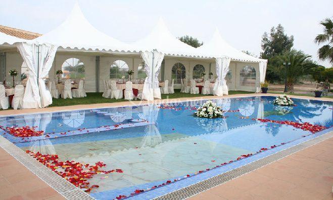 Carpas y decoración de eventos