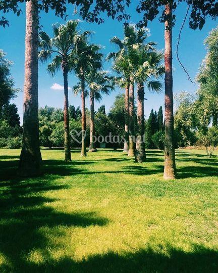 Amplios jardines