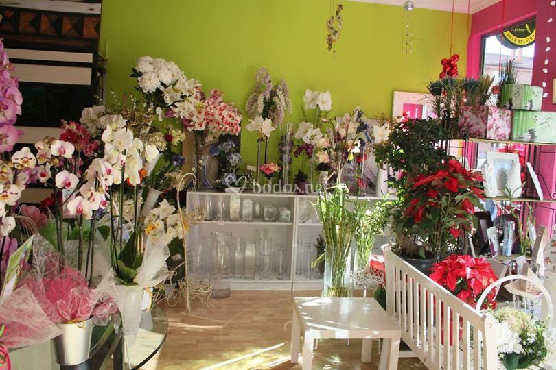 Floristería Marisol
