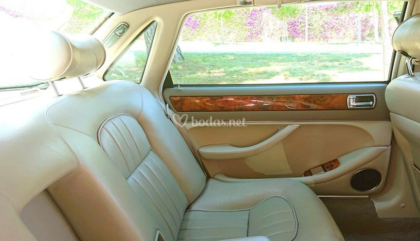 Interior jaguar