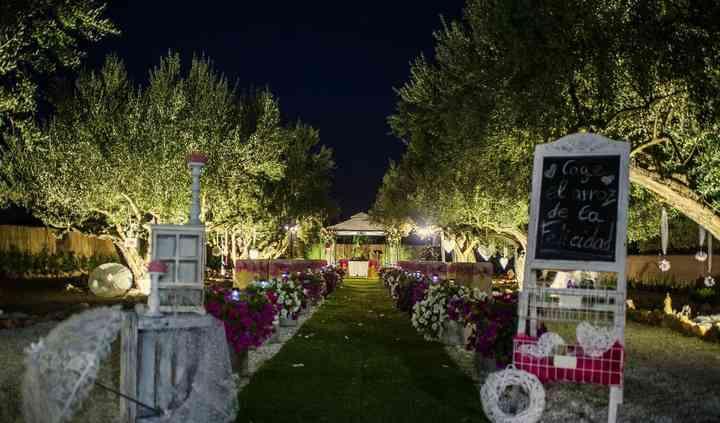 El jardín por la noche