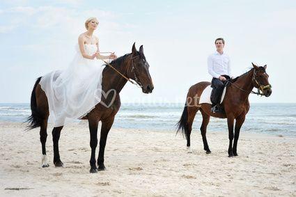 Diseña tu boda como siempre soñaste