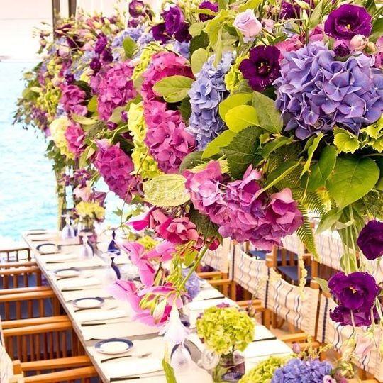 Flores Orhibea