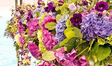 Flores Orhibea 1