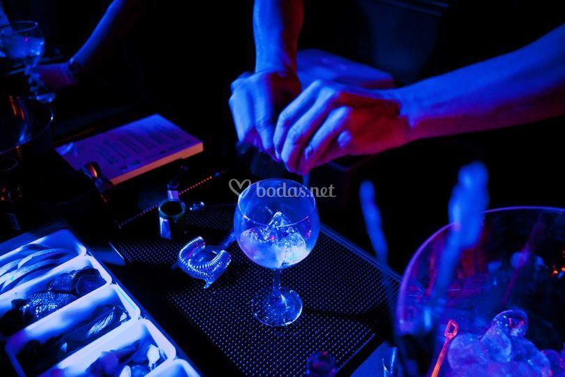 Bartender barra gin-tonics