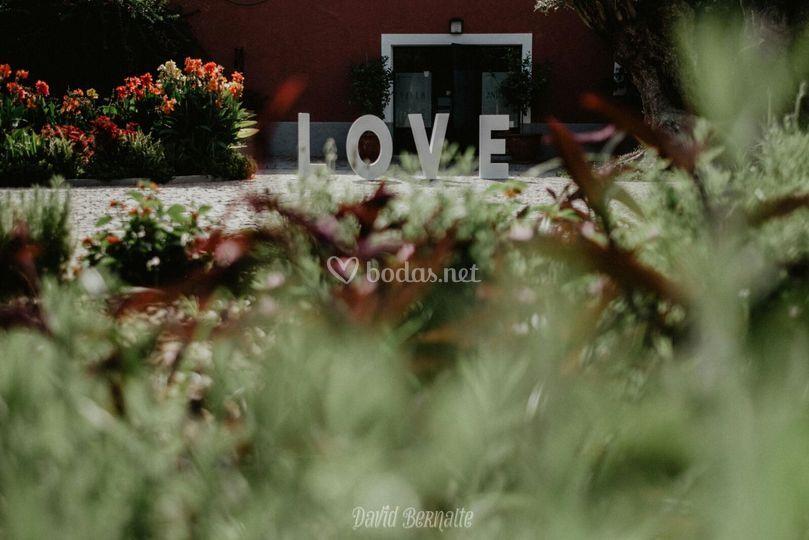 Villa Antonia Love