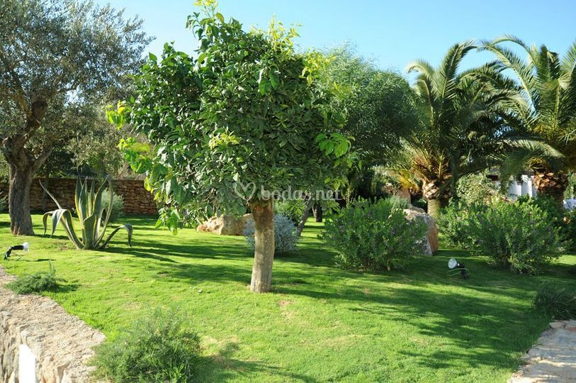 Jardines exteriores de es jardins de fruitera foto 6 for Fotos jardines exteriores