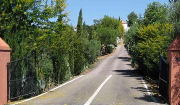 Hacienda Pino La Legua