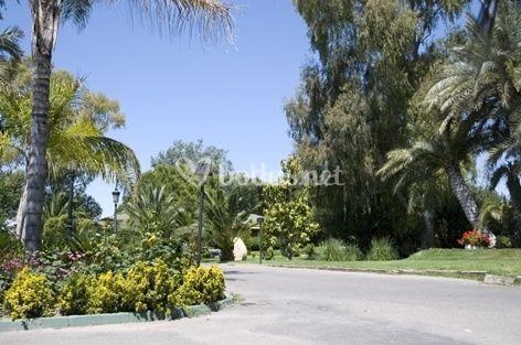 Jardinería Tropical