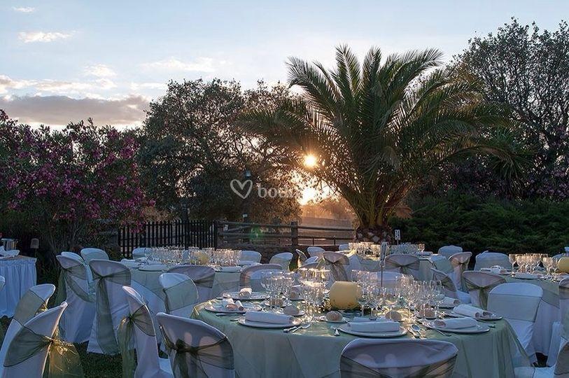 Cena Jardín Boda