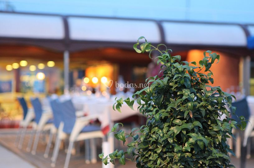 Can Jaume Restaurant