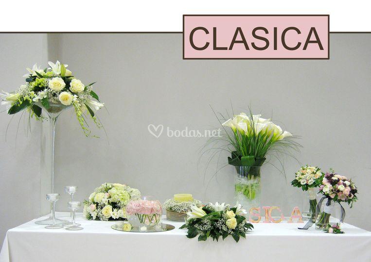 Navarro Collection Clasica