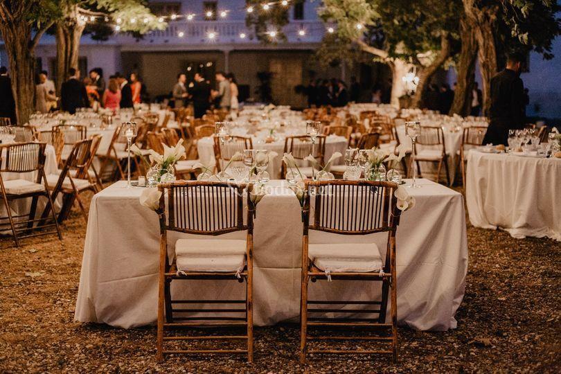 Banquete entre árboles