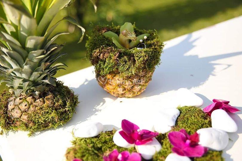 Porta anillos tropical
