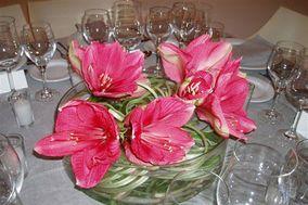 Flores Verinne