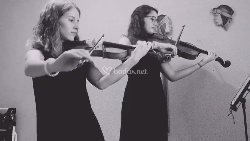 Concierto violín y viola