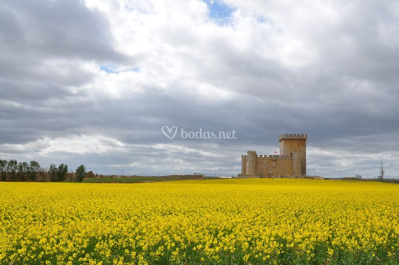 El castillo en primavera