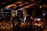 Vi�edos iluminados de Mas�a Papiol