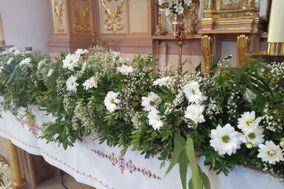 Petit Bouquet Flores & Eventos