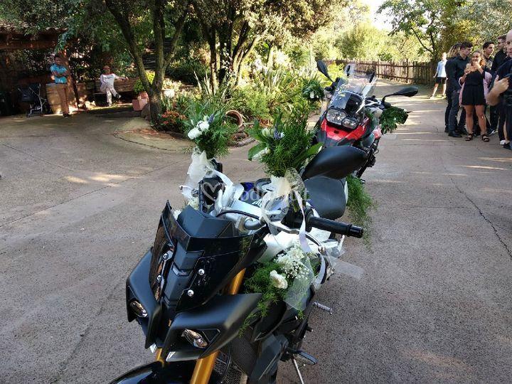 Motos decoradas