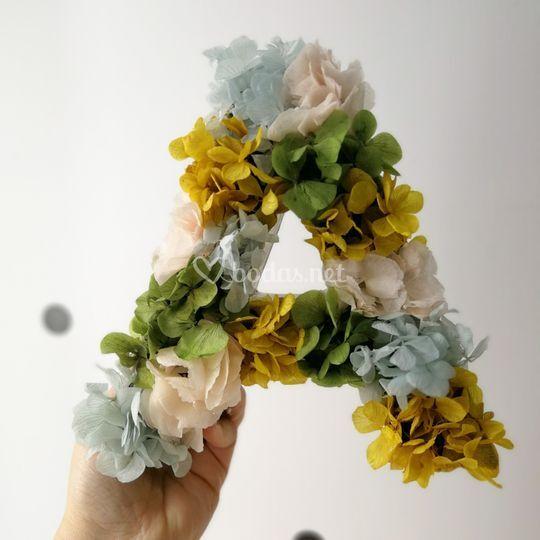Inicial flores preservadas