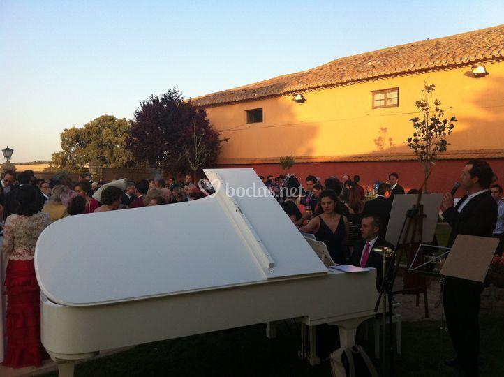 Cóctel aire libre de Viva Voz & Friends