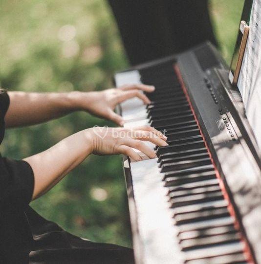 Pianista Camerata OE
