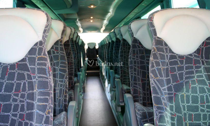 Autobuses para invitados