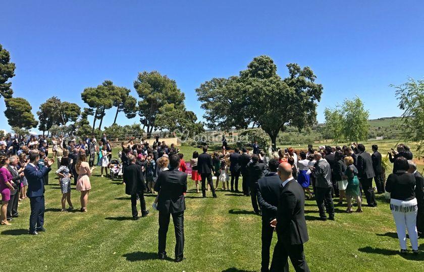 Invitados boda en Monzón