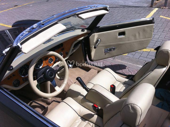 Interior del vehículo