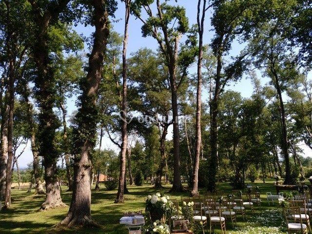 Lenda do Quercus