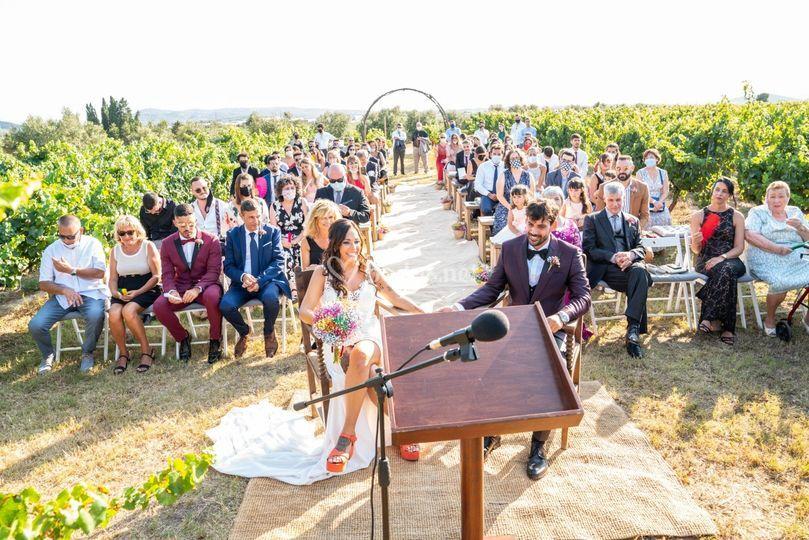 Ceremonia entre viñedos