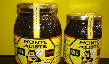 Miel Monte Aliste