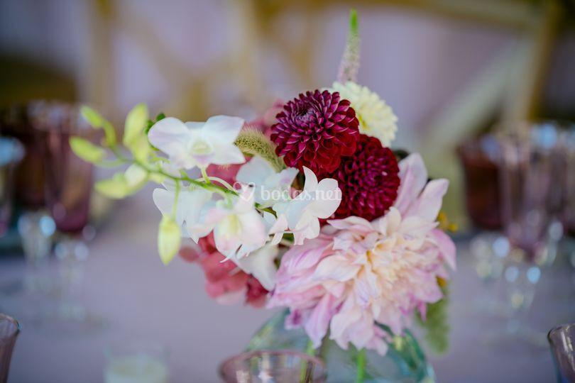 niflauers - Flores y Eventos