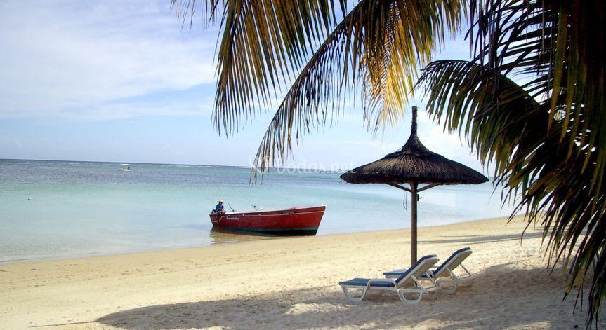 Palm Beach Mauricio