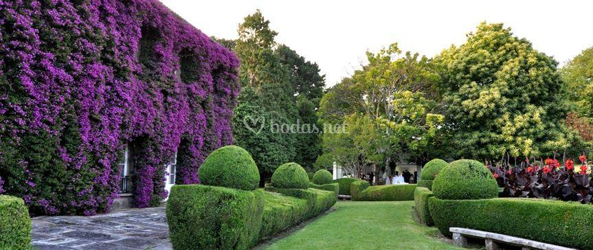 Jardines y Buganvilla