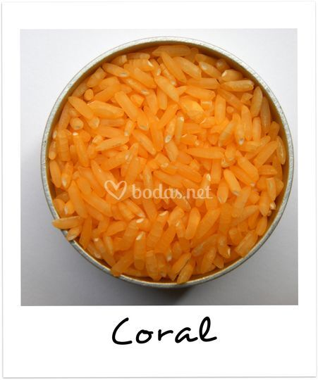 Originalidad en color coral