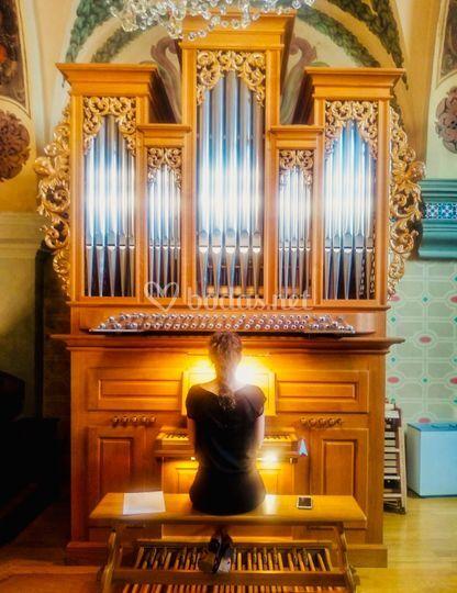 Órgano de Cogullada: Ana