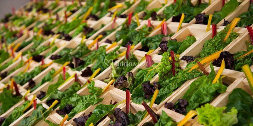 Catering Alfardos