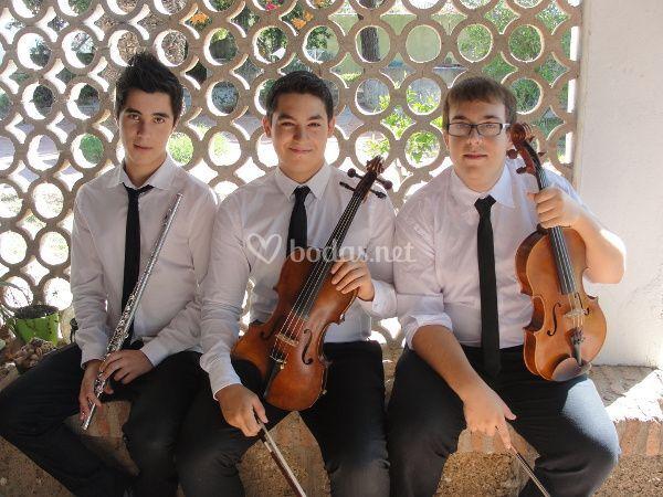 El trío d'Arezzo