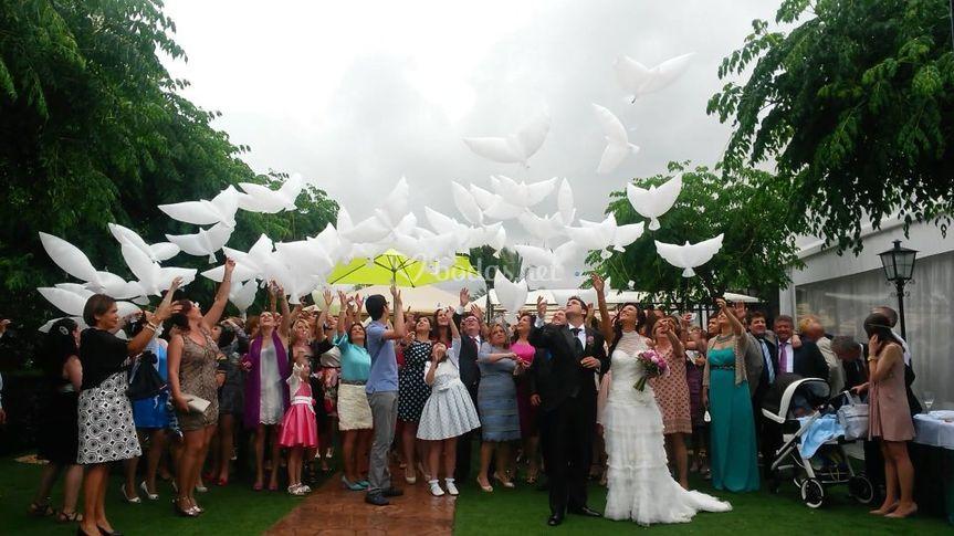 Suelta de Llumywings en boda