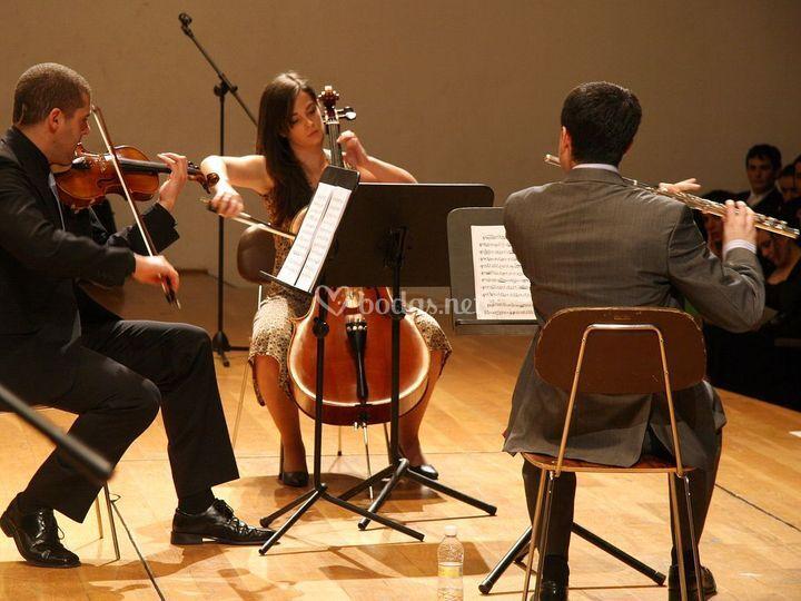 Auditorio M.de Falla (Granada)