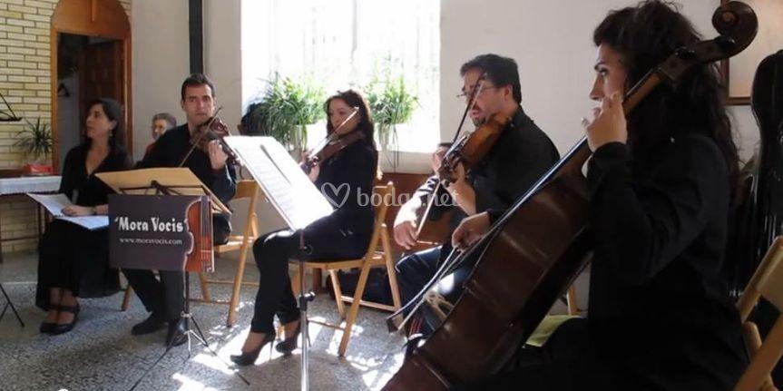Cuarteto de cuerda con soprano