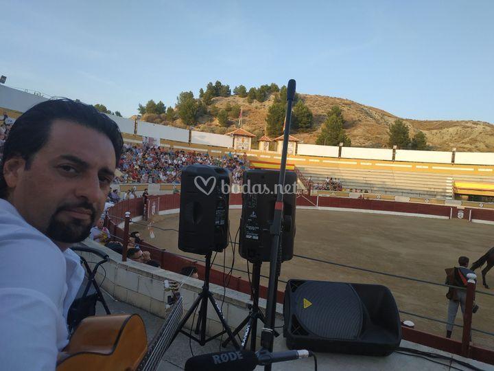Flamenco para el toro