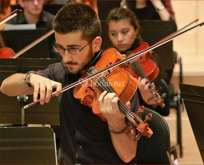 Viola: Juan Urdiales
