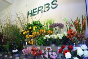 Herbs Barcelona
