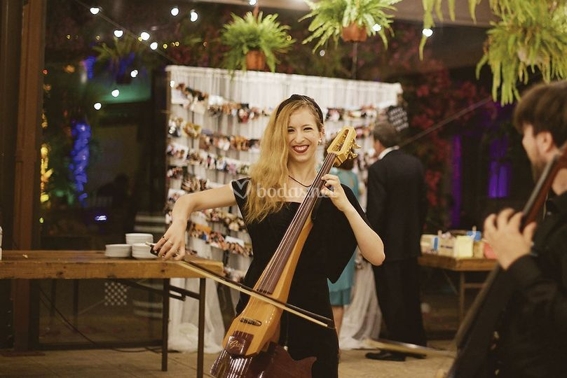 Cello eléctrico banquete