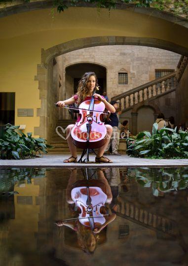 Cello acústico para eventos