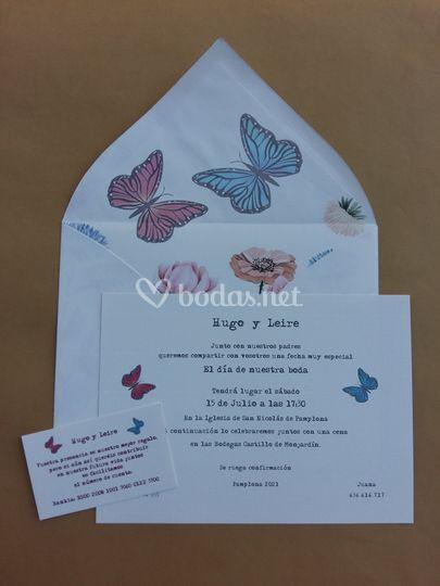 Conjunto mariposas